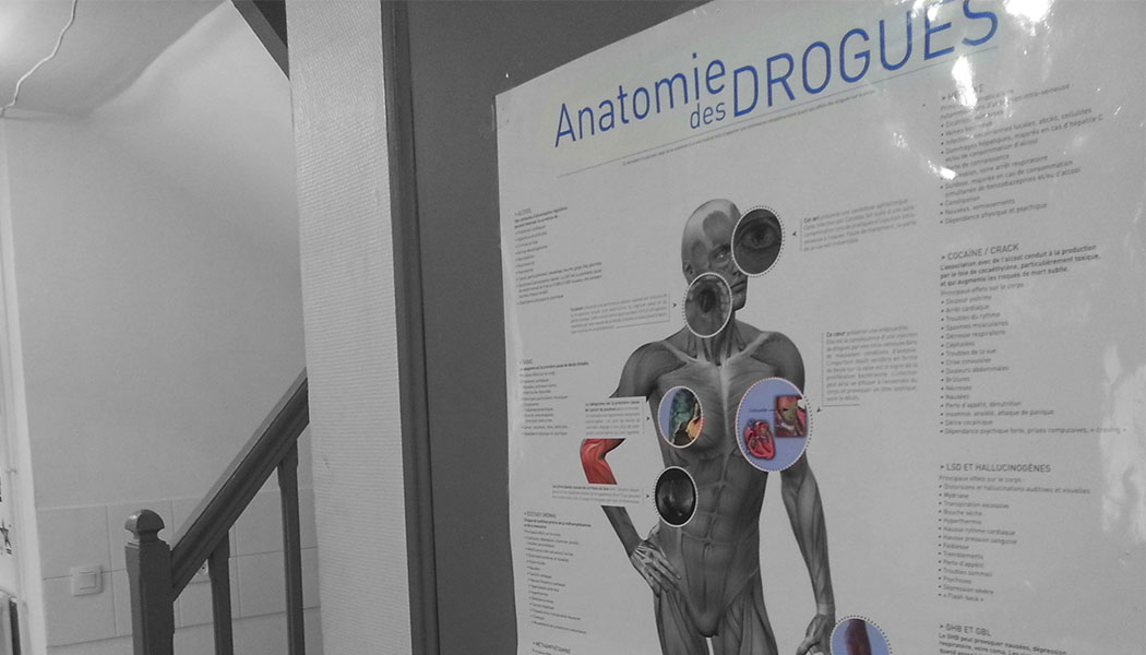 anatomie drogues
